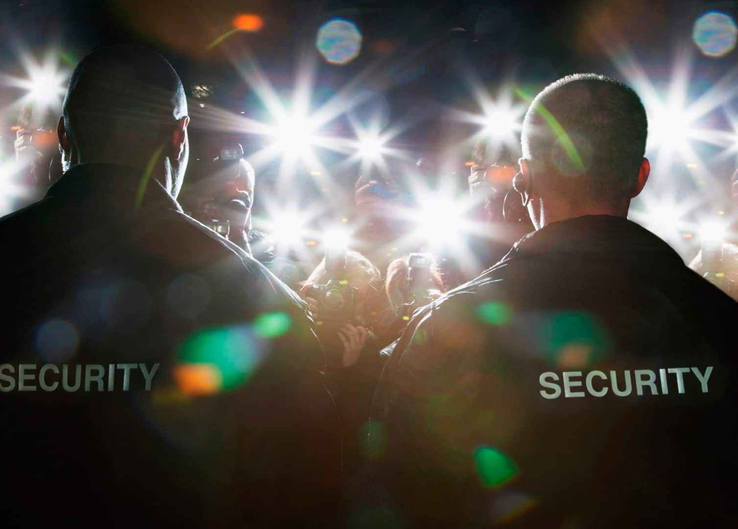 Ever Consider a Job in Professional Security?